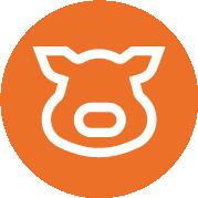 Icon Pigs Oranje